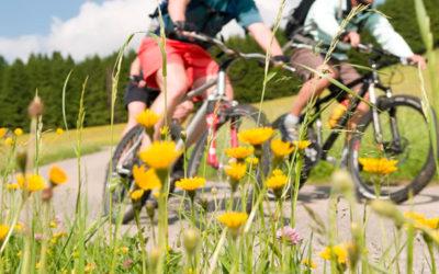 In Bicicletta dalla città alla fattoria